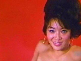 Japanese Tease Vintage Petite Hairy Pussy Sheer